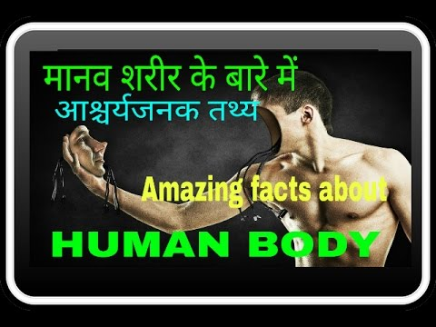 Amazing Fact about Human Body in hindi|