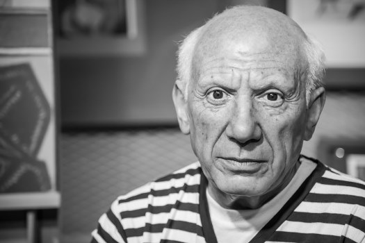 Pablo Picasso prerak prasang in hindi