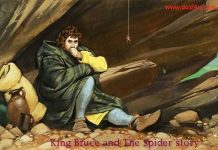 Koshish karne walon ki haar nahi hoti - King Bruce and the spider story