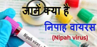 What is Nipoh virus in hindi