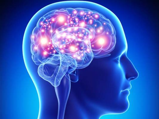 Amazing Fact about Brain In Hindi
